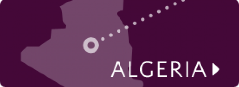 Algeria map icon