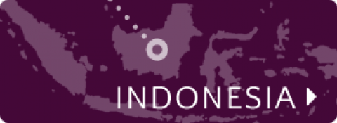 Indonesia map icon