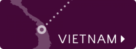 Vietnam map icon